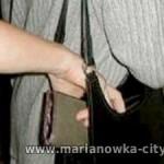 В Омске поймали карманницу из Марьяновки