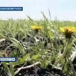 Упад Марьяновки в 2009 году